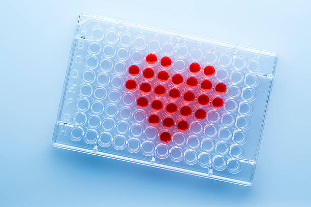 Medical test - Heart Microplate with medical test sexually transmitted disease stock pictures, royalty-free photos & images