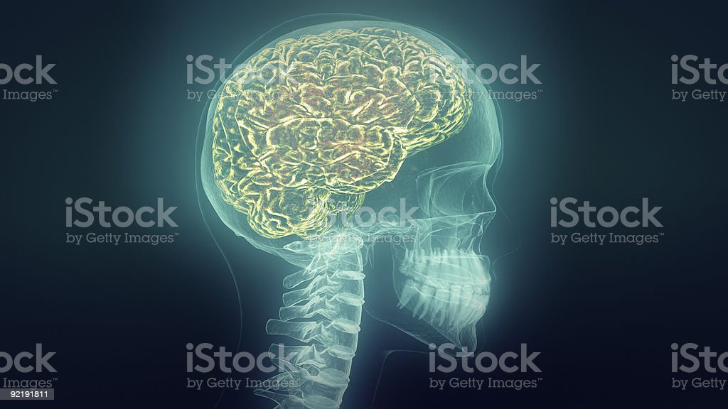 Medical video background. Head X-Ray animation. Loop. stock photo