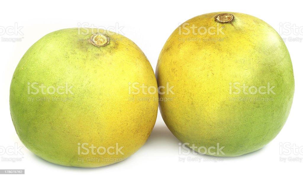 Medicinal Bael fruits stock photo