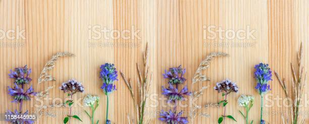 Medicinal herbs lavender oregano sage yarrow on a wooden background picture id1158445935?b=1&k=6&m=1158445935&s=612x612&h=wv x7uwzimiaapxnd5qxgjeosh3izazxw0vyyae5uds=