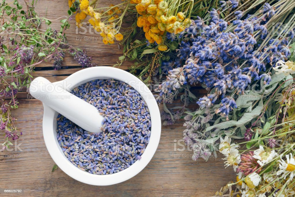 Medicinal herbs, mortar filled with healthy dry lavender flowers. stock photo