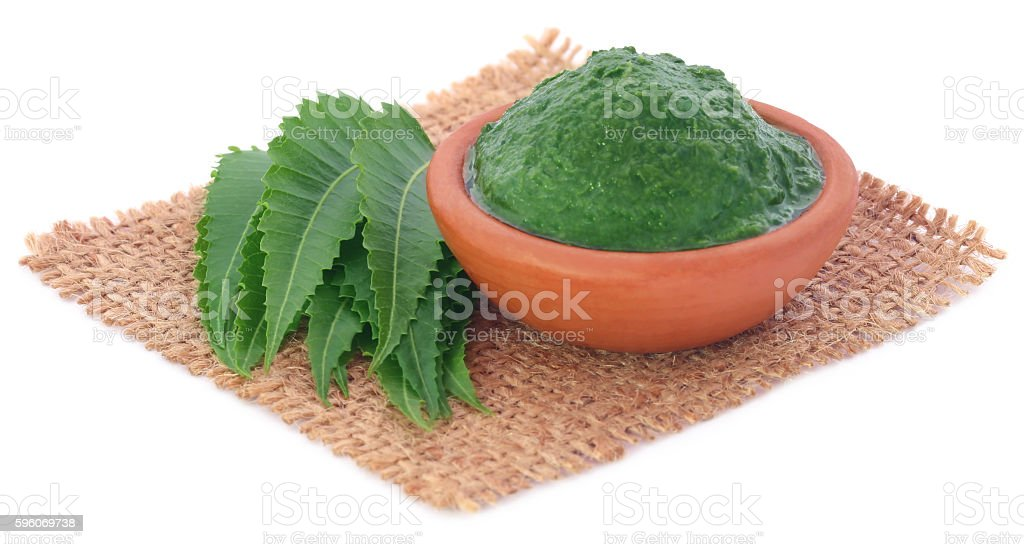 Medicinal neem leaves with ground paste royalty-free stock photo