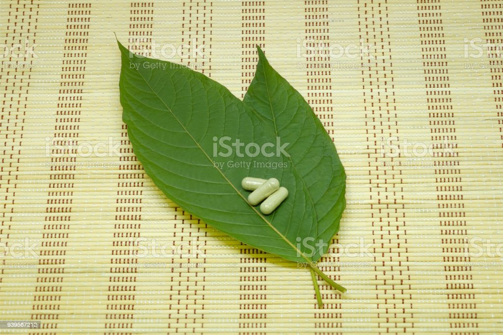 medicine capsule, drug and Mitragyna speciosa leaf (kratom) is Thai herbal which encourage health on mat stock photo
