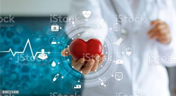 Arzt Hält Rotes Herzform In Der Hand Und Symbol Medizinisches Netzwerkverbindung Mit Modernen Virtuellen Bildschirmschnittstelle Im Labor Medizintechniknetzwerkkonzept Stockfoto und mehr Bilder von Gesundheitswesen und Medizin