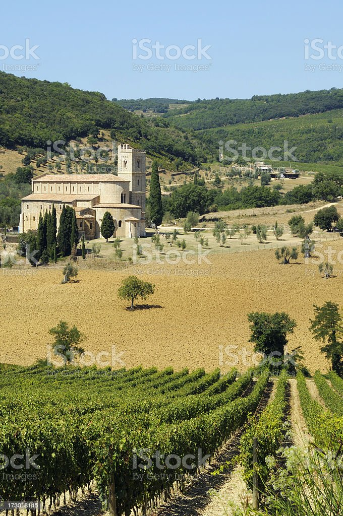 Medieval abbey and vineyard in Tuscany royalty-free stock photo