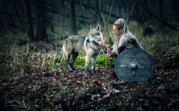 Medieval Movie Scene with a Scandinavian Viking warrior woman with a wolf in forests stock photo