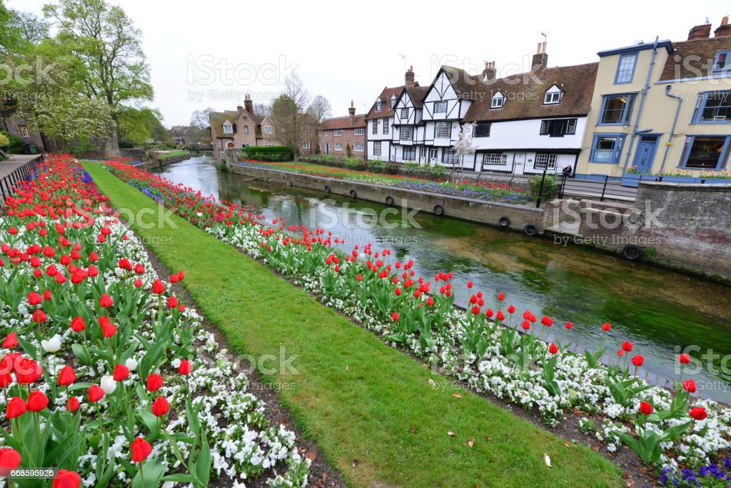 Medieval River and flower beds stock photo