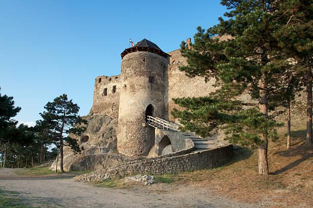 Medieval royal Boldogko castle in Tokaj region Hungary stock photo