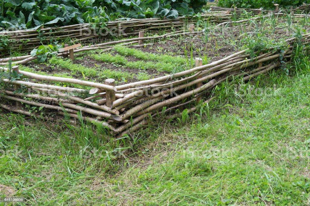 medieval style garden stock photo