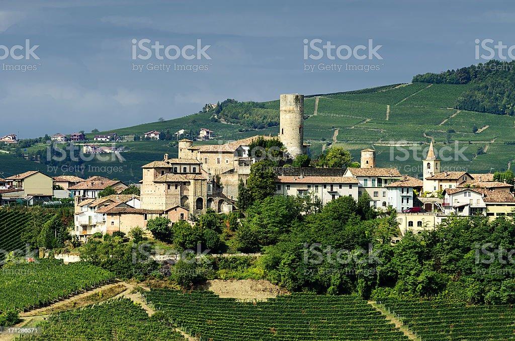 Medieval village and vineyard stock photo