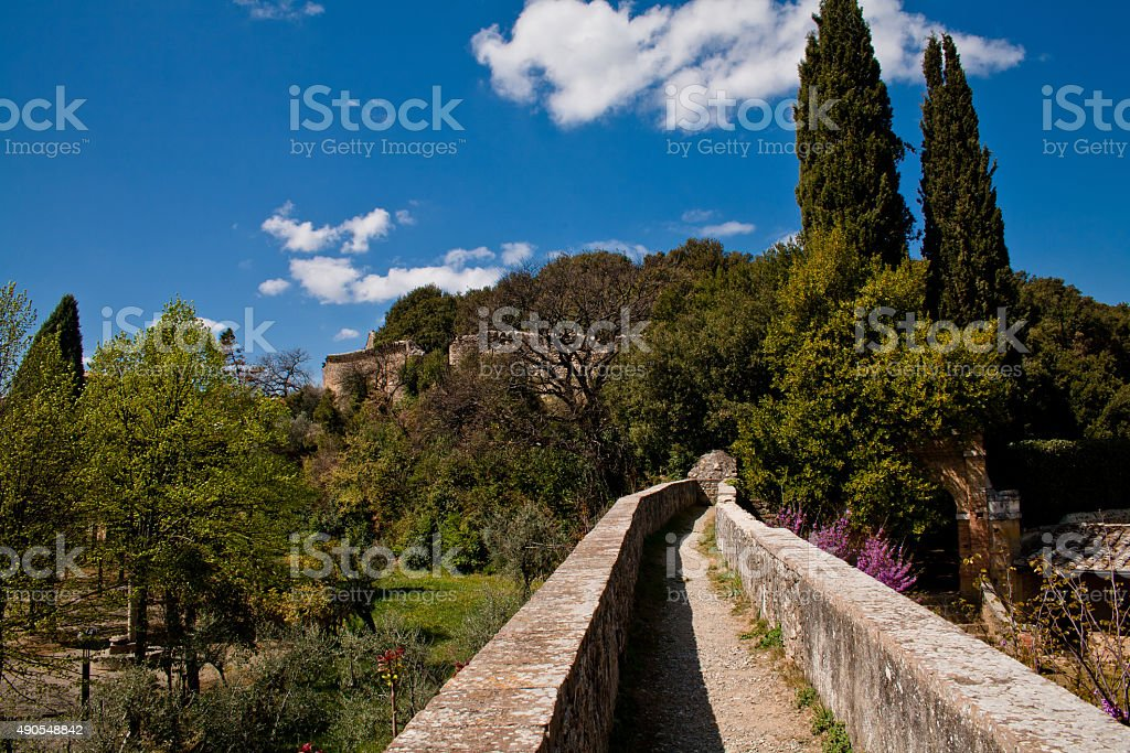 Medieval wall and trees stock photo