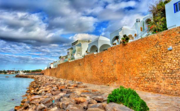 medina von hammamet an der mittelmeerküste in tunesien - urlaub in tunesien stock-fotos und bilder