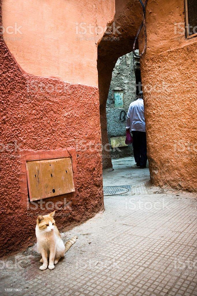 Medina of Marrakesh royalty-free stock photo