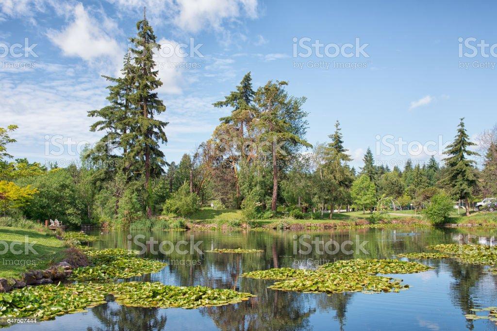 Medina Park in Spring stock photo