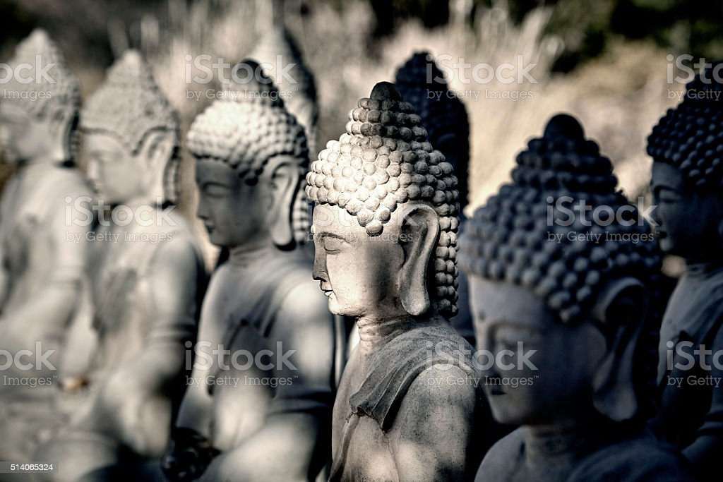 Meditating Buddha Statues in a Row stock photo