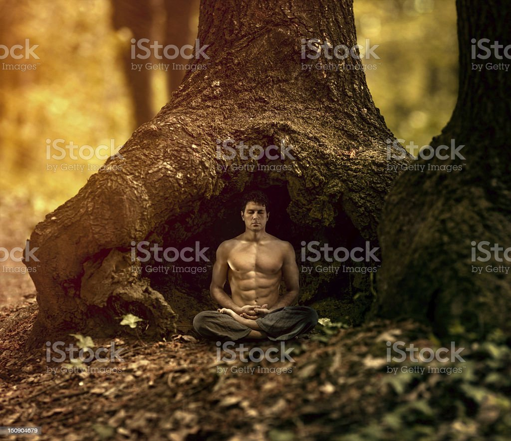 Meditation in the nature royalty-free stock photo