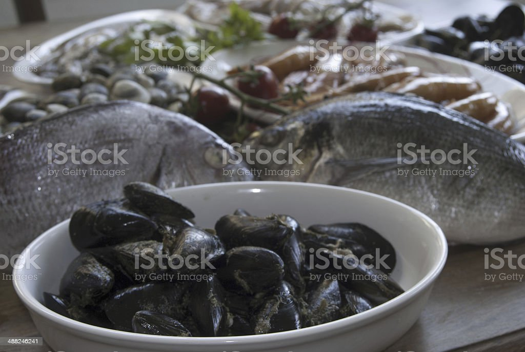 mediterranean bluefish stock photo