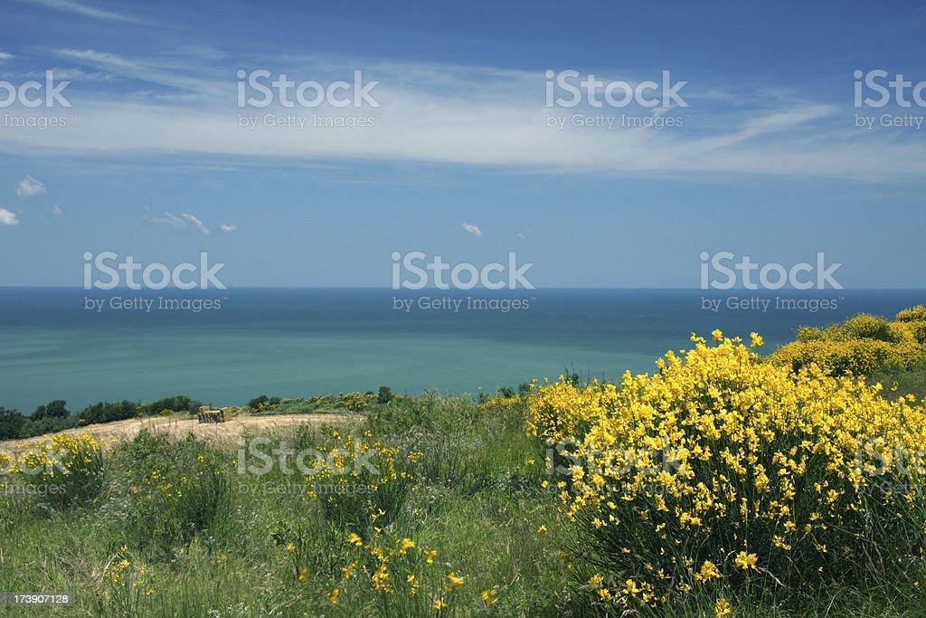 Mediterranean Coast in Italy royalty-free stock photo