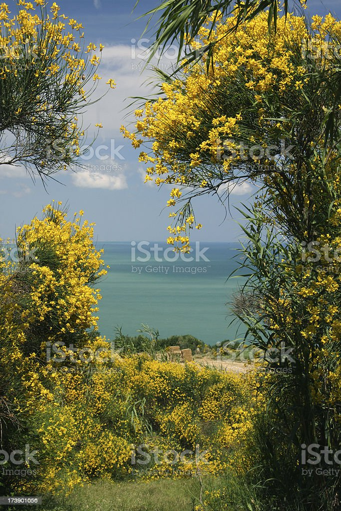 Mediterranean Coast in the Marches stock photo