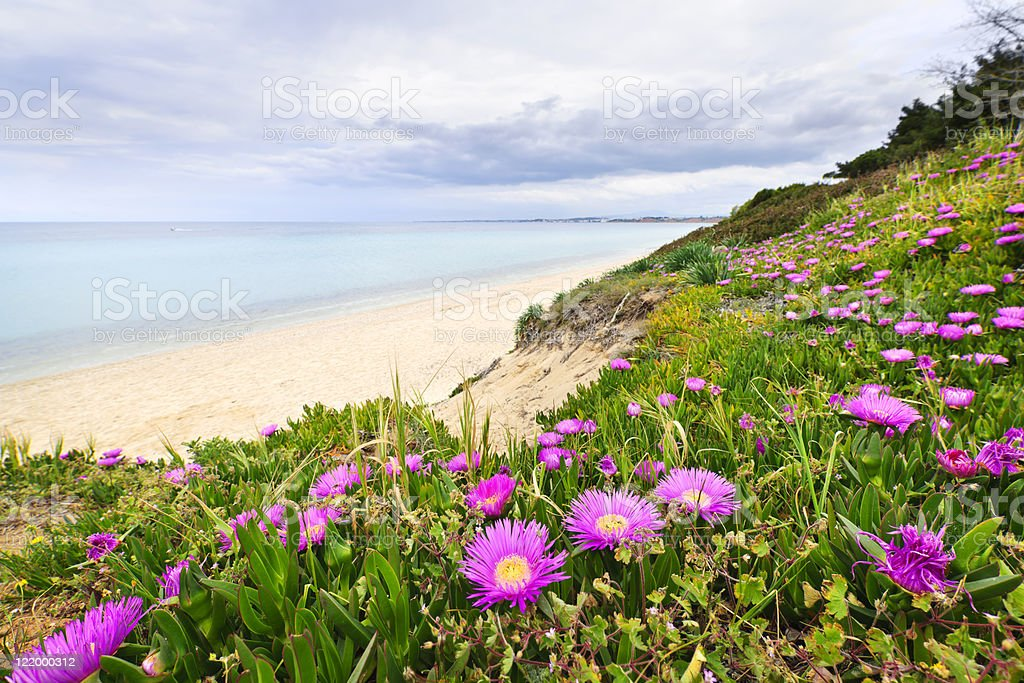 Mediterranean landscape stock photo