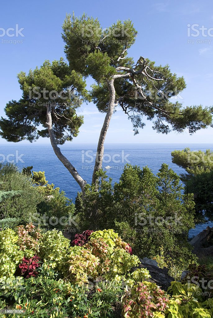 Mediterranean royalty-free stock photo