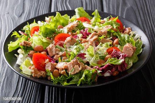 istock Mediterranean salad with tuna fish, borlotti beans, cherry tomatoes, lettuce close-up. horizontal 1057063106