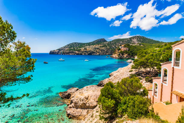 mediterranean sea majorca island, beautiful bay of camp de mar - mar mediterraneo foto e immagini stock