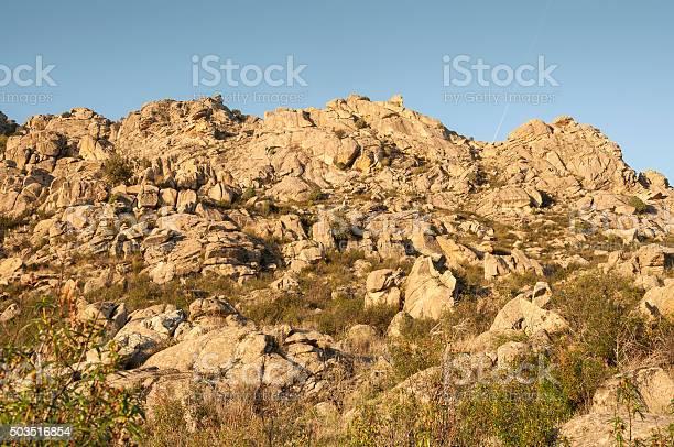 Mediterranean vegetation in sierra de los porrones picture id503516854?b=1&k=6&m=503516854&s=612x612&h=3vzdhychnzf1vmxowpupdqgbhvoaldc4qpsx 5 704k=