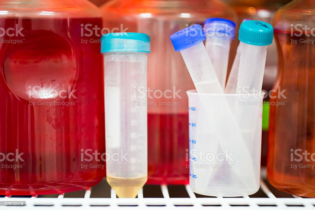 Medium of Cell Culture stock photo