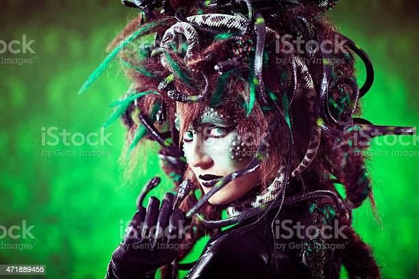 Medusa-foton och fler bilder på Fotografi - Bild