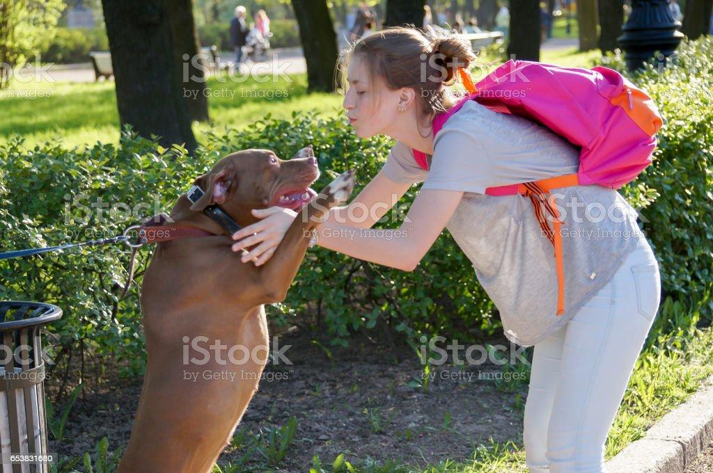 Parc rencontre chien