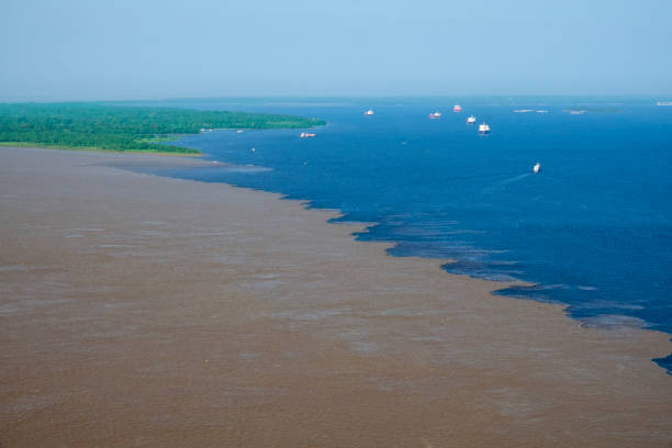 Meeting of Solimoes and Negro Rivers in the Amazon