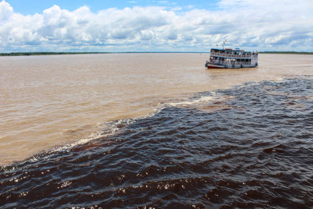 Meeting of the waters of Rio Negro and Amazon River Meeting of the Waters of Rio Negro and the Amazon River or Rio Solimoes near Manaus, Amazonas, Brazil in South America rio negro brazil stock pictures, royalty-free photos & images