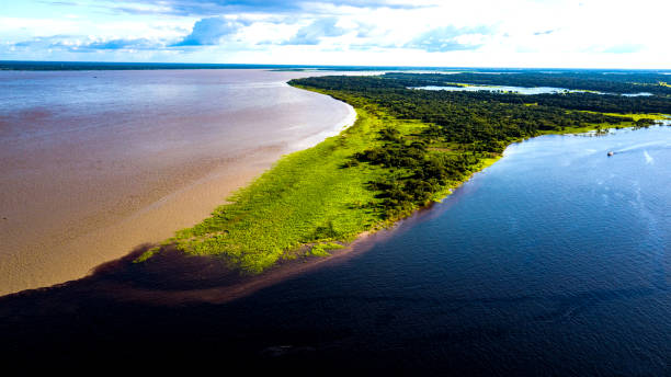 Meeting of the Waters Encontro das águas - Manaus - AM rio negro brazil stock pictures, royalty-free photos & images