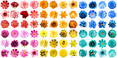 istock Mega pack of 72 in 1 natural and surreal blue, yellow, red, orange, turquoise and pink flowers isolated on white 667571712