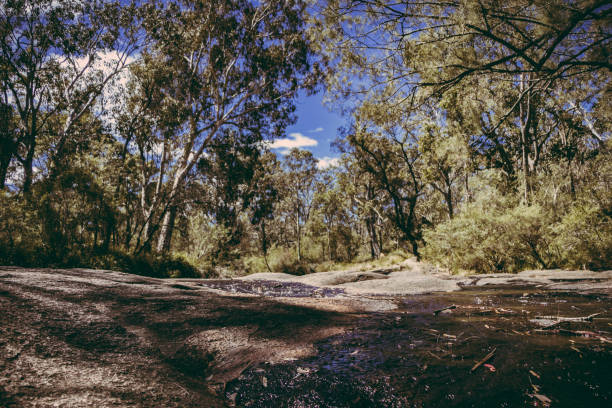 Megalong Valley Creek Bed Stream stock photo