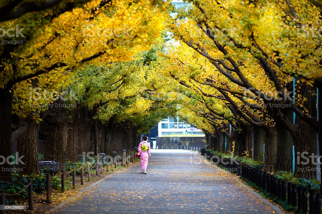 Meiji Jingu Gaien stock photo