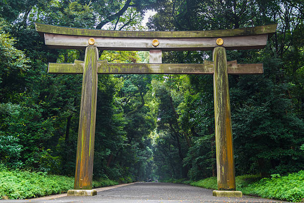 Meiji-jingu temple in Central Tokyo, Japan Tokyo, Japan - September 15, 2016: Meiji-jingu temple in Central Tokyo, Japan. Meiji Shrine is a shrine dedicated to the deified spirits of Emperor Meiji and his consort, Empress Shoken. shrine stock pictures, royalty-free photos & images