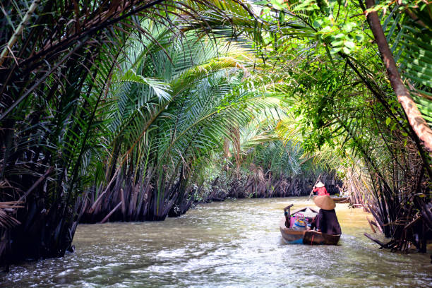 mekong delta, vietnam - mekong river stock pictures, royalty-free photos & images