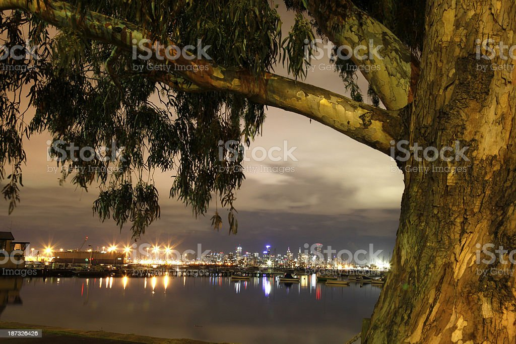 Melbourne by night royalty-free stock photo