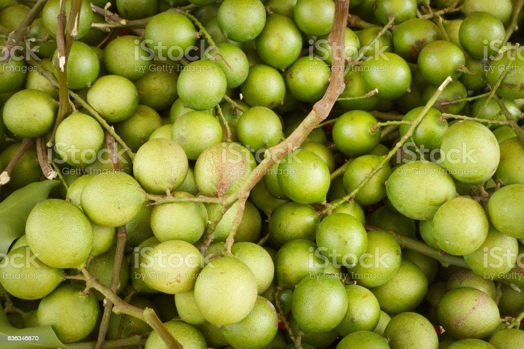 Melicoccus bijugatus - Mamoncillo Fruits - Spanish Lime stock photo