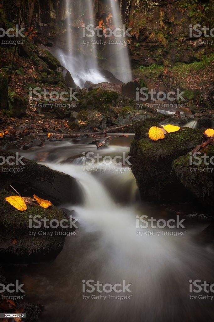 Melincourt Waterfalls in Autumn stock photo