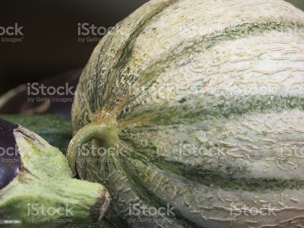 melon and eggplant - Cucurbitales royalty free stockfoto