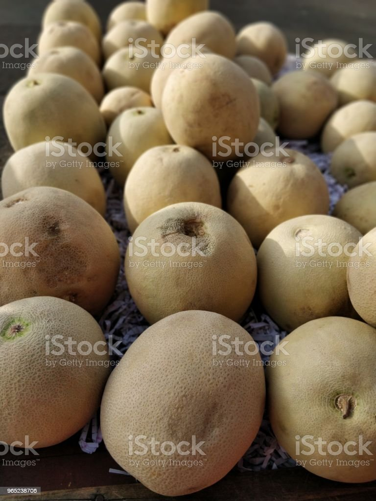Melon fruits after harvest royalty-free stock photo