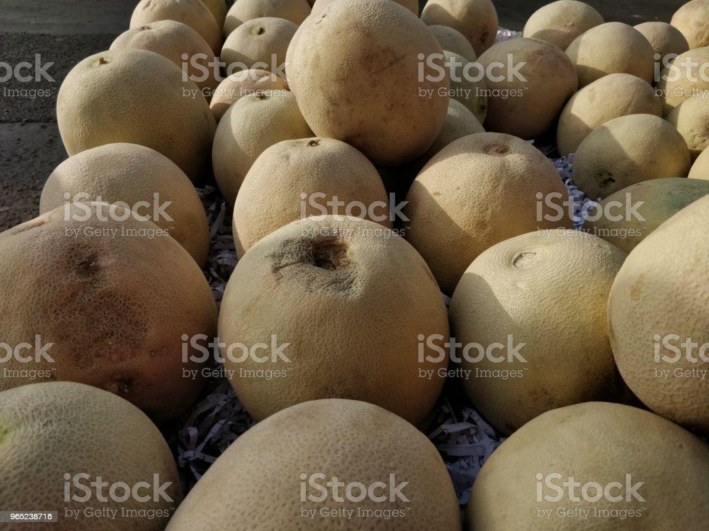 Melon fruits after harvest zbiór zdjęć royalty-free