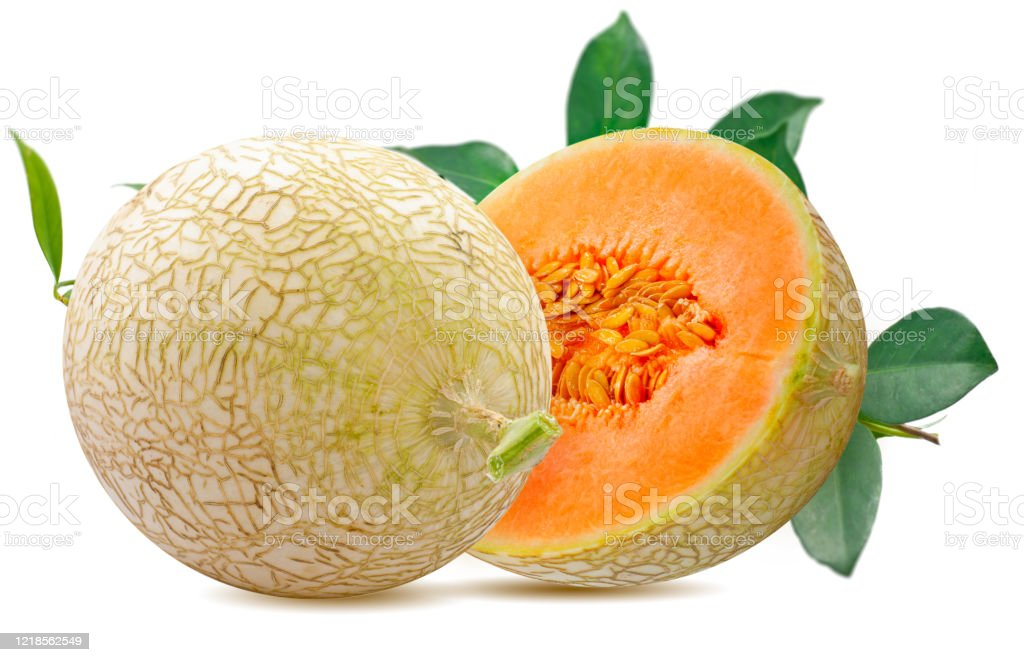 Melon Or Cantaloupe Fruit Isolated On White Background Stock Photo Download Image Now Istock The nutrients that these melons contain may help preserve eye health, prevent asthma, and more. melon or cantaloupe fruit isolated on white background stock photo download image now istock