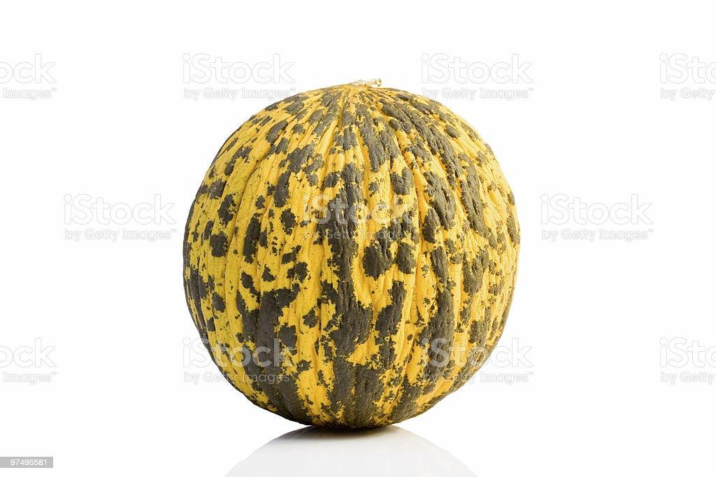 Melon royalty-free stock photo