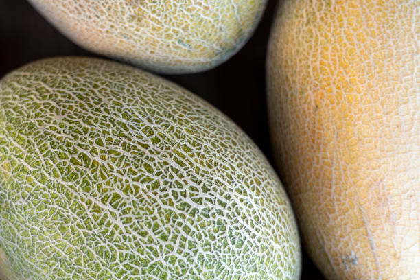 melons top macro view high resolution stock photo