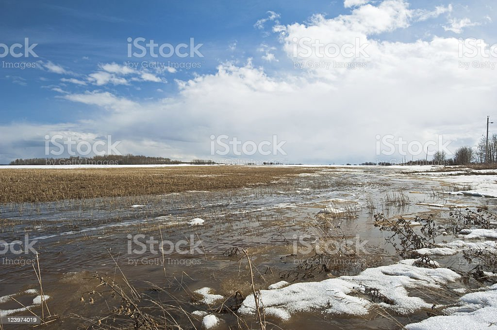 melt water flowing across a grain field low angle view royalty-free stock photo