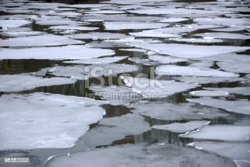 Melting Ice Floes In Water Stock Photo & More Pictures of Antarctica